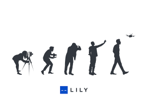 lily-6