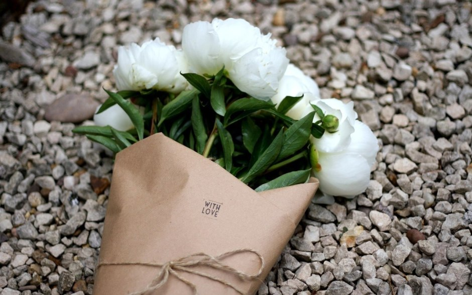 white-roses-tumblr